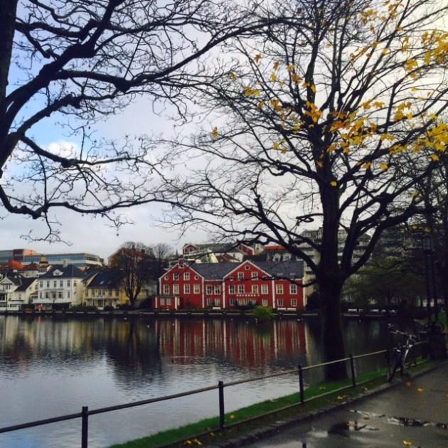 Outono Stavanger - Noruega