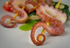 hobotnica priprema i recept (4)