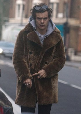 Image result for harry styles fur