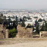 Battle of Carthage: Tunisia Demolishes Homes to Protect Ancient Site; Reuters