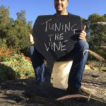 Review: Tuning the Vine