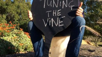 Tuning the Vine