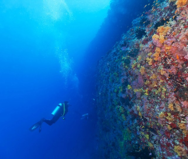 Its Time For The Next Wave Of Ocean Exploration And Protection