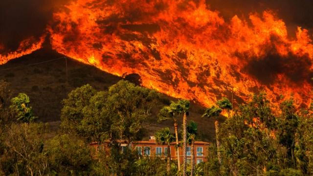 Gavin Newsom's Exceedingly Ignorant Climate Claim