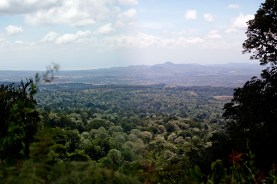 Ngorogorokraterns utsida, Tanzania