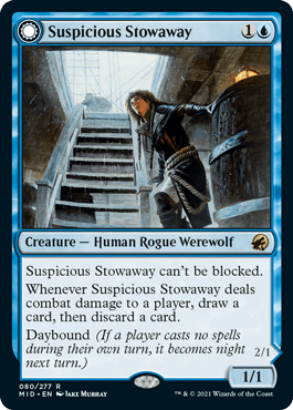 Suspicious Stowaway
