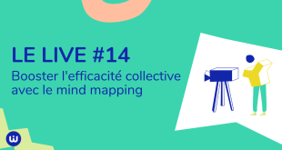#LIVE#14 - Mind mapping