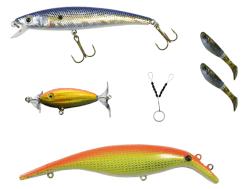 big eye minnow x-sardine, swim whizz, gummipärlor, sppraken ytbete och relaxjiggar.