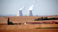 Das Kernkraftwerk Nogent in der französischen Gemeinde Nogent-sur-Seine im August 2020.