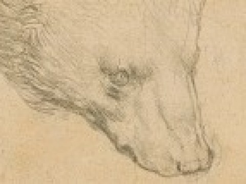 Schwindelerregender Preis bei Leonardo-Auktion erwartet