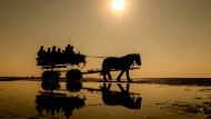 Anstieg des Meeresspiegels auch an der Nordseeküste spürbar, wie hier in Cuxhaven