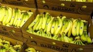 Lidl scheitert mit dem Versuch, in seinen Läden nur noch Fairtrade-Bananen anzubieten.