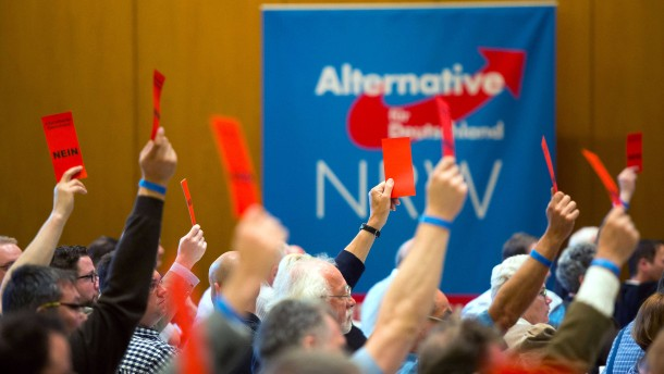 © dpa AfD-Parteitag in Werl