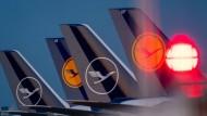 Mit 20 Prozent will sich der deutsche Staat an der gestrandeten Lufthansa beteiligen.