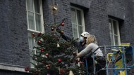 Weihnachtsstimmung in Zeiten von Brexit: Vertreter der englischen Christmas Tree Growers Association schmücken den Weihnachtsbaum vor Downing Street Number Ten.