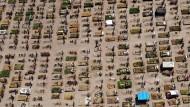Der Tod im Bild: Ein Friedhof mit Corona-Toten im mexikanischen Valle de Chalco