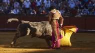 Die konservative Regierung hatte den Stierkampf 2013 zum nationalen Kulturgut erklärt, das es besonders zu schützen gilt.