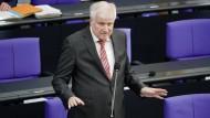 Innenminister Horst Seehofer (CSU) im Bundestag.