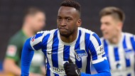 Mindestens 14 Tage in Isolation: Dodi Lukebakio und Hertha BSC