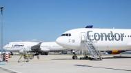 Längst nicht mehr eins: Lufthansa und Condor am Frankfurter Flughafen