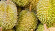 Asiatischer Durian stinkt gewaltig, hat aber auch angenehmere Seiten. Aus der Frucht gewonnenes Kohlenstoffgel lässt sich zum Bau von Superkondensatoren nutzen.