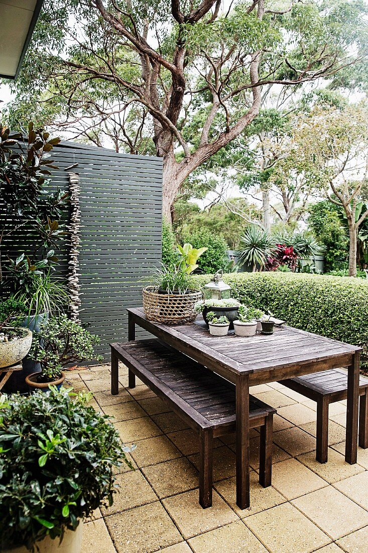 https www living4media com images 11503694 table and bench set on a green terrace in front of box hedge and screen wall