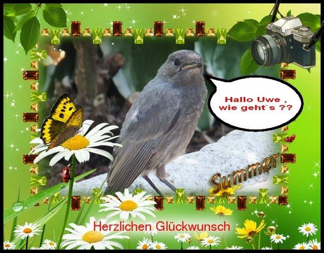 Geburtstagswunsche Garten Gluckwunsche Zum Geburtstag