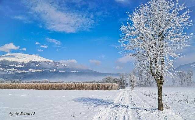 ... how beautiful winter can be ... wintry prospects are ahead of us.
