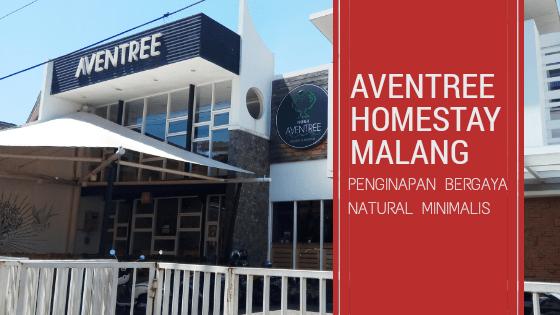 Aventree Homestay Malang : Penginapan Bergaya Natural Minimalis
