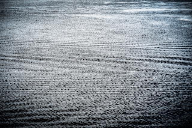saltsjön.foto: BelleBlue©Photo 2013