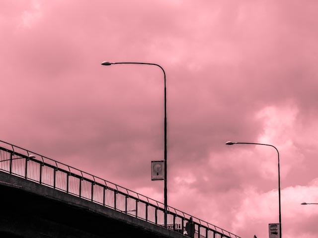 bron.foto: BelleBlue© 2013