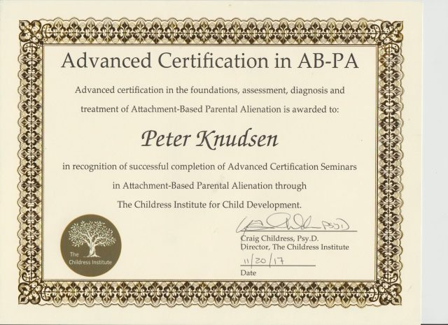 Expert Assessment Attachment Parental Alienation