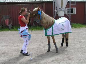 Dis och Jag 2007