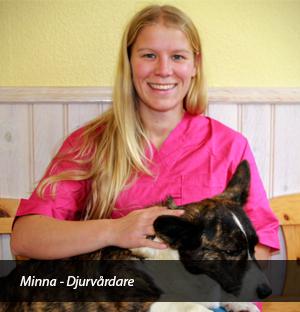 Minna Dalagården