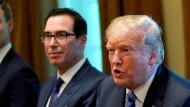 Der amerikanische Finanzminister Mnuchin (links) hält Präsident Donald Trump beim Thema Steuererklärungen bislang den Rücken frei.