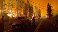 Gegen die Flammen: Einsatzkräfte versuchen bei Markleeville im Osten Kaliforniens, das Tamarack-Feuer einzudämmen.