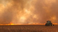 Ein Traktor fährt in Brasilien über ein brennendes Feld. In dem Land sollen Brandrodungen seit Januar 2019 im Vergleich zum Vorjahr um 83 Prozent zugenommen haben.