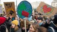 Schüler demonstrieren vor dem Rathaus in Hamburg für mehr Klimaschutz.