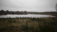 Still ruht der See – neben 5000 Tonnen toten Nerzen