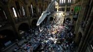"""Die Revolution frisst ihre Schauhallen: Klimaaktivisten der Extinction Rebellion bei einem """"Die-in"""" im Natural History Museum London, 2019"""