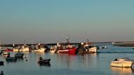 Bereit zur Ausfahrt in die Vergangenheit: die Fangflotte der Tintenfischfischer an der Algarve.