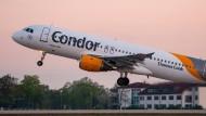 Condor fliegt weiter.