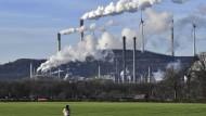 """CO2-Neutralität in Unternehmen: """"Das ist physikalisch Stand jetzt unmöglich"""""""