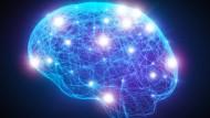 Die entarteten Zellen organisieren ein Netzwerk, das sich bis in den hintersten Winkel des Gehirns ausbreitet. Keine Operation und keine Chemotherapie kommt dagegen an.