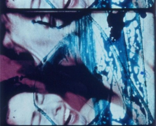 Carolee Schneemanns Fuses plays in the adults-only portion of this years cat-related experimental film program.