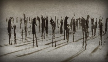 One of the animated images from Watchers of the Sky