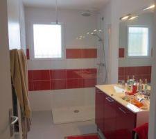 salle de bain meubles rouges