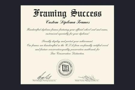Framing Success Ltd | Viewframes.org