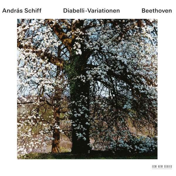 Ludwig Van Beethoven Diabelli Variationen Op 120 2 Cds Jpc