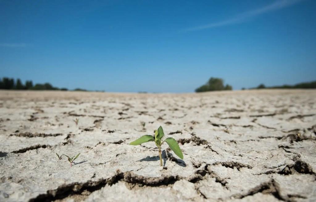 Les mesures sanitaires ont entraîné une réduction des émissions de GES durant les mois de février à juin, mais au final, leur impact sur le réchauffement planétaire sera limité.
